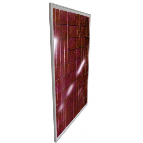 THALEOS MODUL POLY ROUGE 240WC